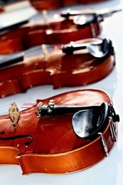 violins in row